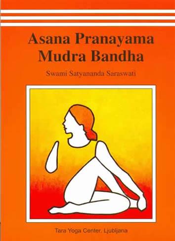 Pranayama Pillow | Pranayama, Best yoga